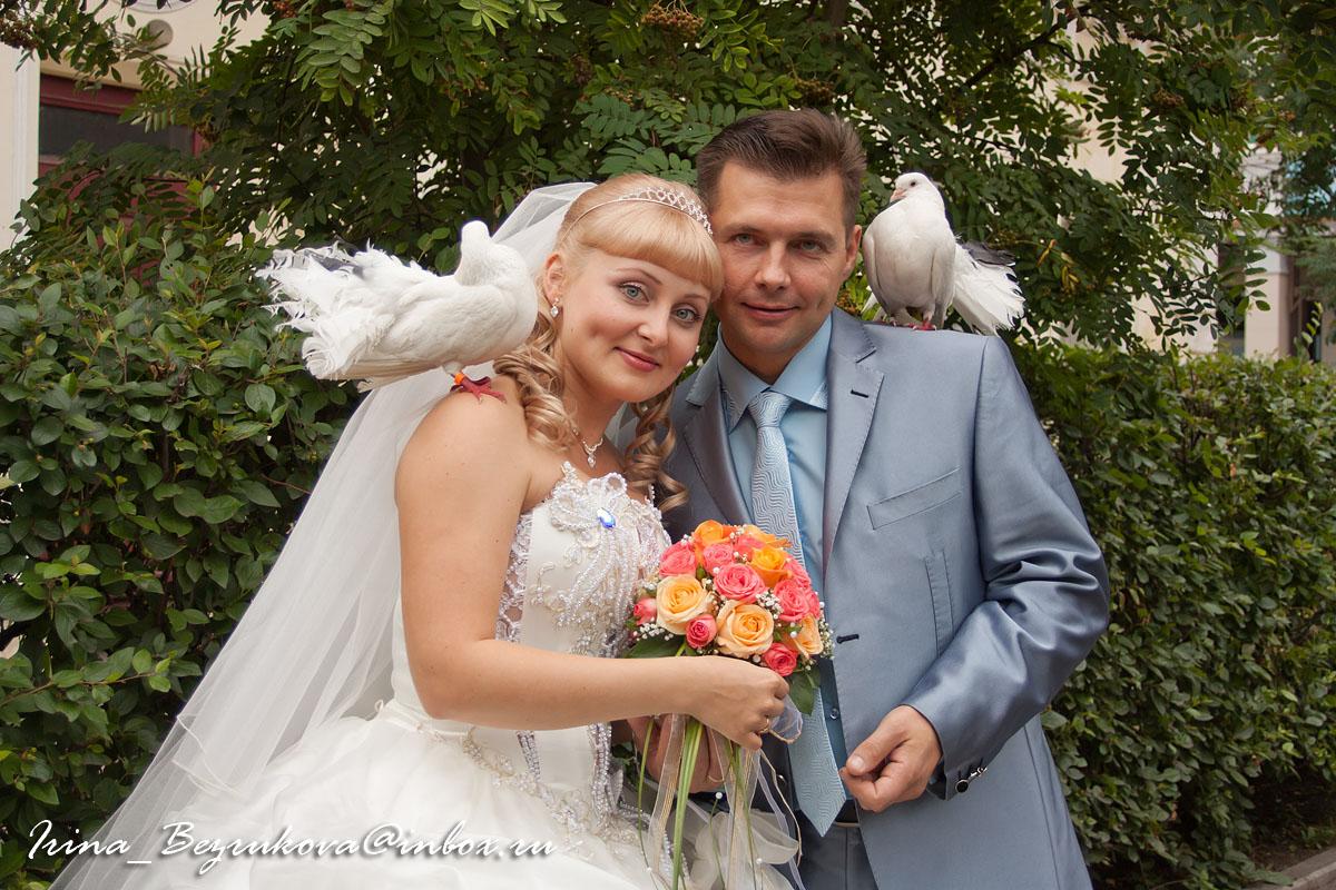Жених и невеста. Голуби.