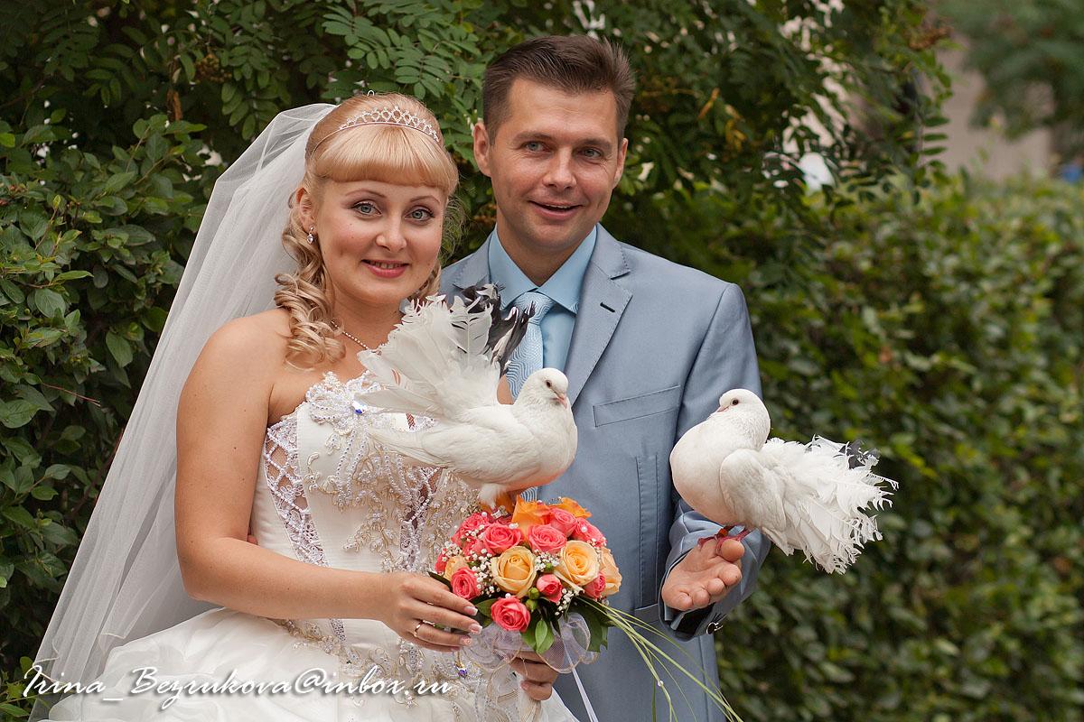 Жених и невеста. Голуби на фоне рябины.