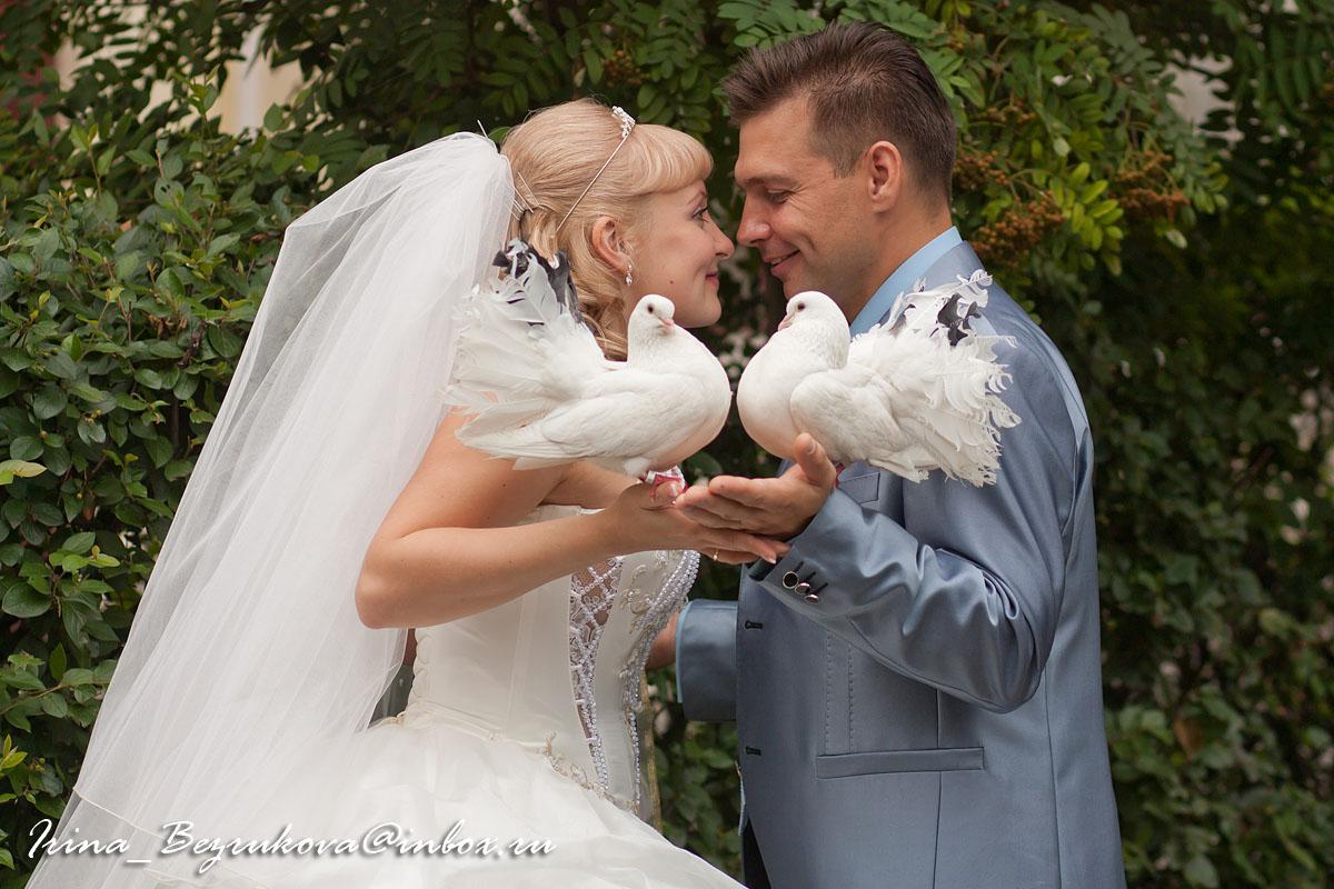 Жених и невеста. Постановка с голубями.